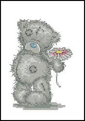 Мишки Тедди-Тедди с ромашкой-Anchor