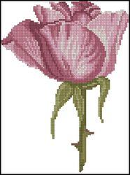 Роза-DMC