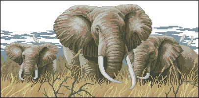 Слоны-Dimensions