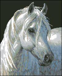 Породистая лошадь-Dimensions