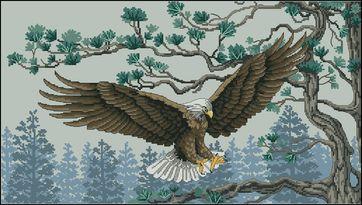 Королевский орел-Dimensions