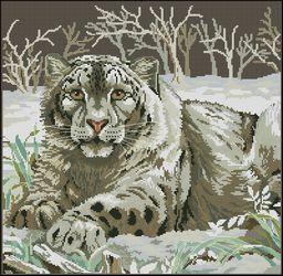 Снежный леопард-Dimensions