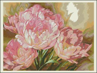Букет тюльпанов-Dimensions