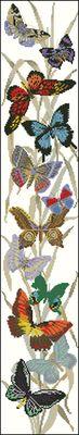 Бабочки-Eva Rosenstand