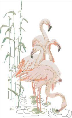 Фламинго-Eva Rosenstand