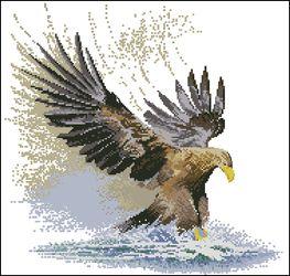 Вышивка крестом орел в полете