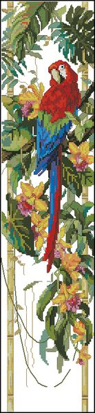 Тропический попугай-Janlynn