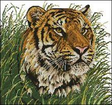 Тигр-Janlynn