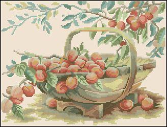 Корзинка с абрикосами-Lanarte