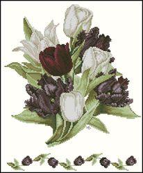 Черный тюльпаны-Lanarte