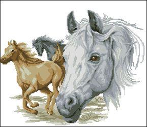 Бегущие лошади-Vervaco