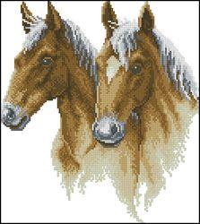 Лошади-Vervaco