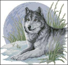 Волк и луна-Vervaco