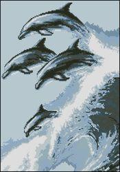 Дельфины-Золотое Руно