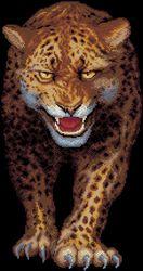 Леопард-Золотое Руно