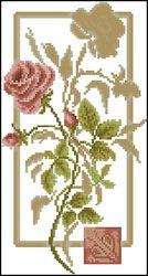 Отражение розы-Золотое Руно
